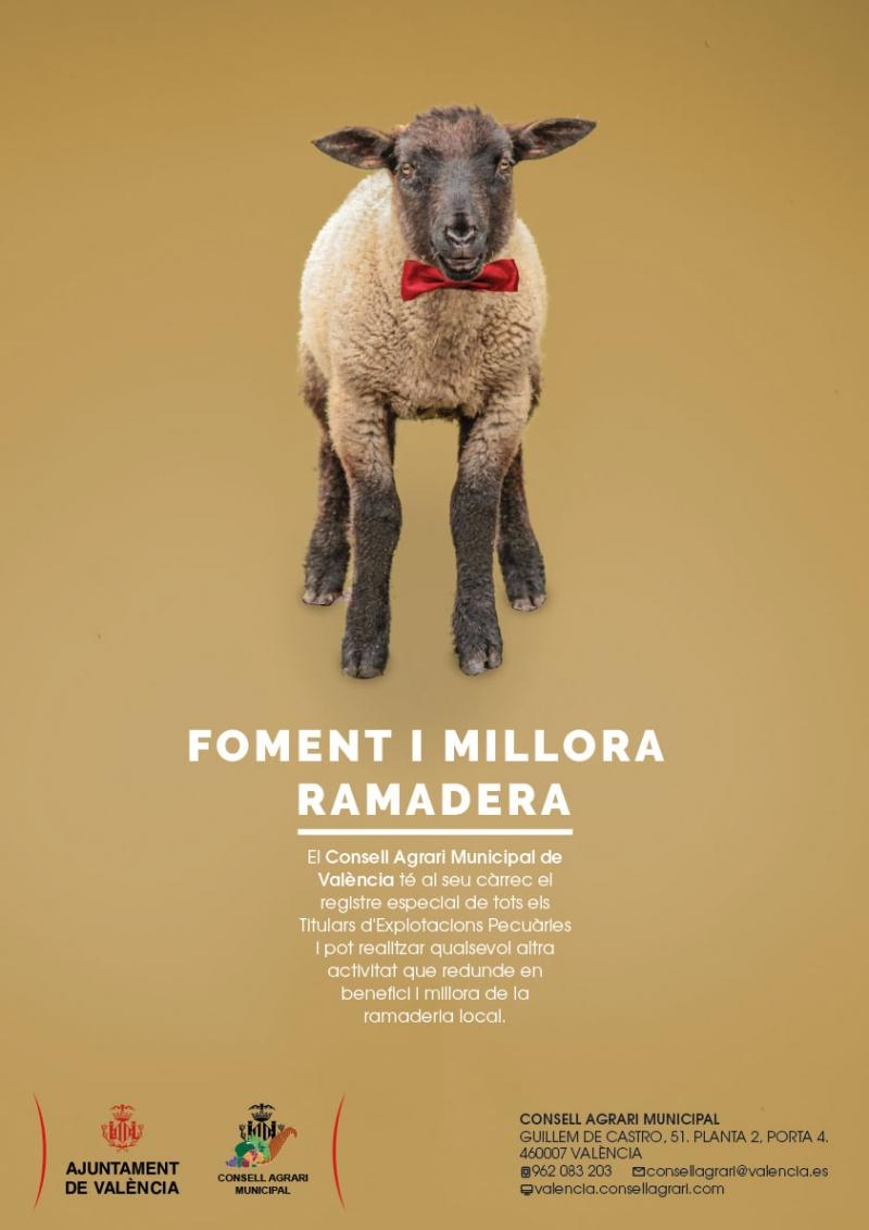 Foment i millora de la ramaderia